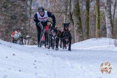 Internationales_Schlittenhunderennen_Todtmoos_3_von_49.jpg