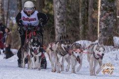 Internationales_Schlittenhunderennen_Todtmoos_9_von_49.jpg