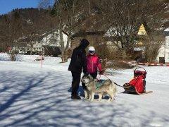 Wintersport-im-Ort-Todtmoos_2018_-3.jpg