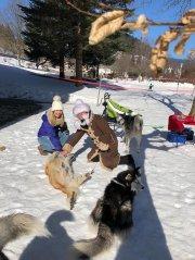 Wintersport-im-Ort-Todtmoos_2018_-31.jpg