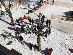 Wintersport-im-Ort-Todtmoos_2018_-34.jpg